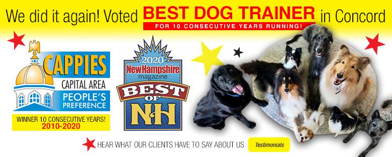 No Monkey Business Dog Training Concord New Hampshire